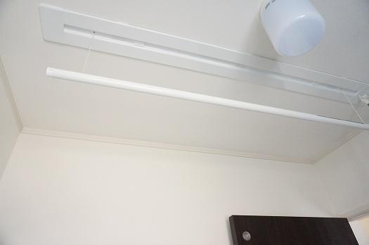 カラクリ洗面所天井